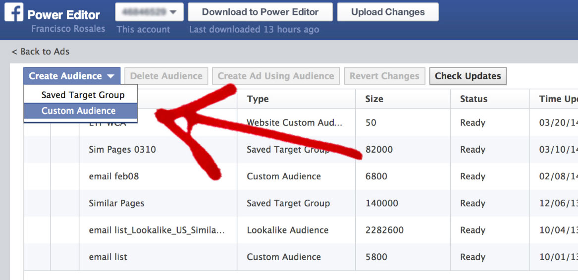 Facebook Custom Audience Page