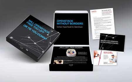 Dimensional direct mail campaign materials for Veritas.