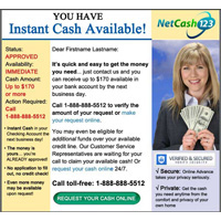 NetCash123 email campaign template